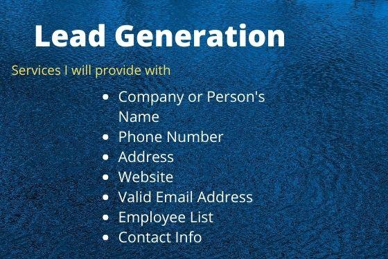 I will provide linkedin lead generation and b2b lead generation