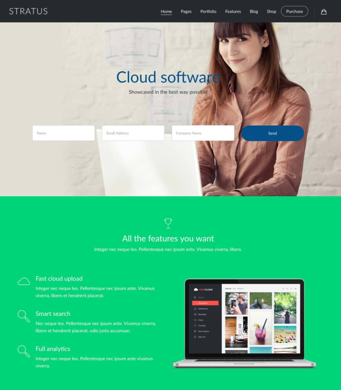 build professional web design or landing page