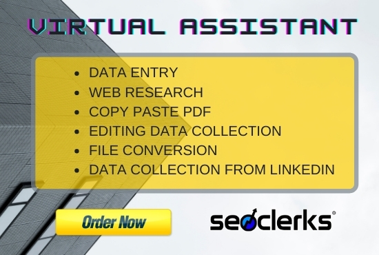 I will be your expert assistant for virtual data entry and web research