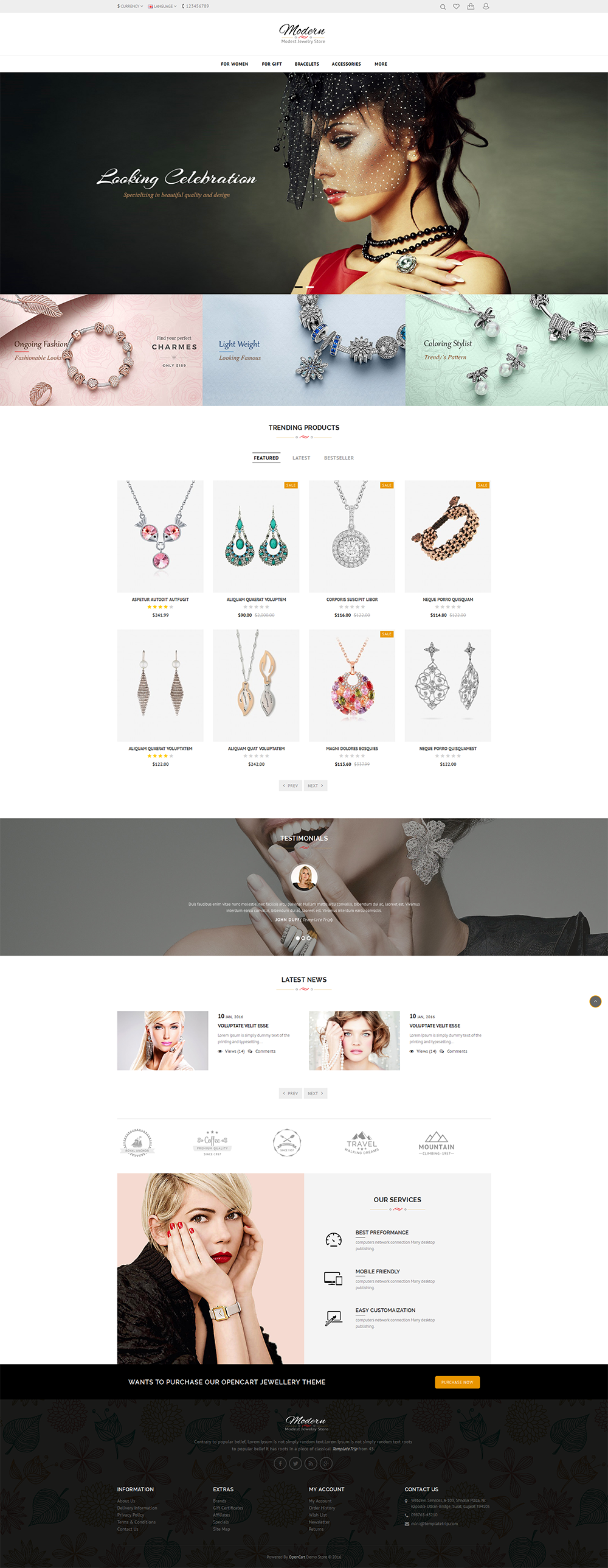 I will design your word press, shopify ,wix website and e-commerce store
