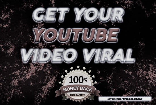 I will youtube promotion and marketing