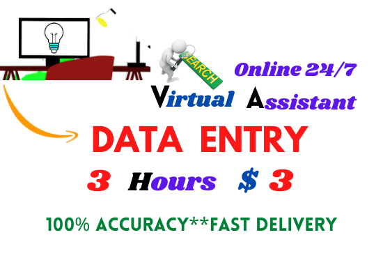 I will do perfect data entry,  web research,  copy paste