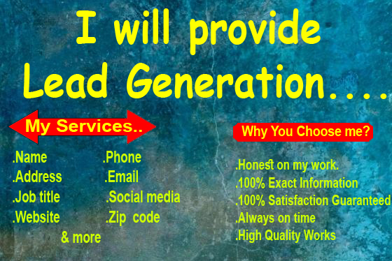 I will provide targeted 100 lead generation