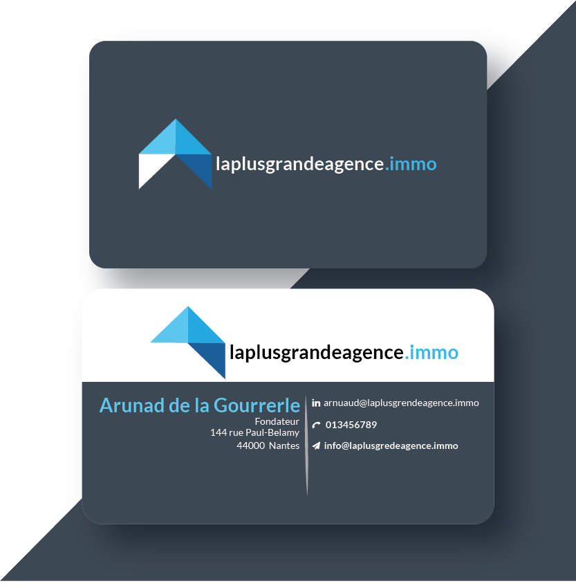 I will make business card and logo design