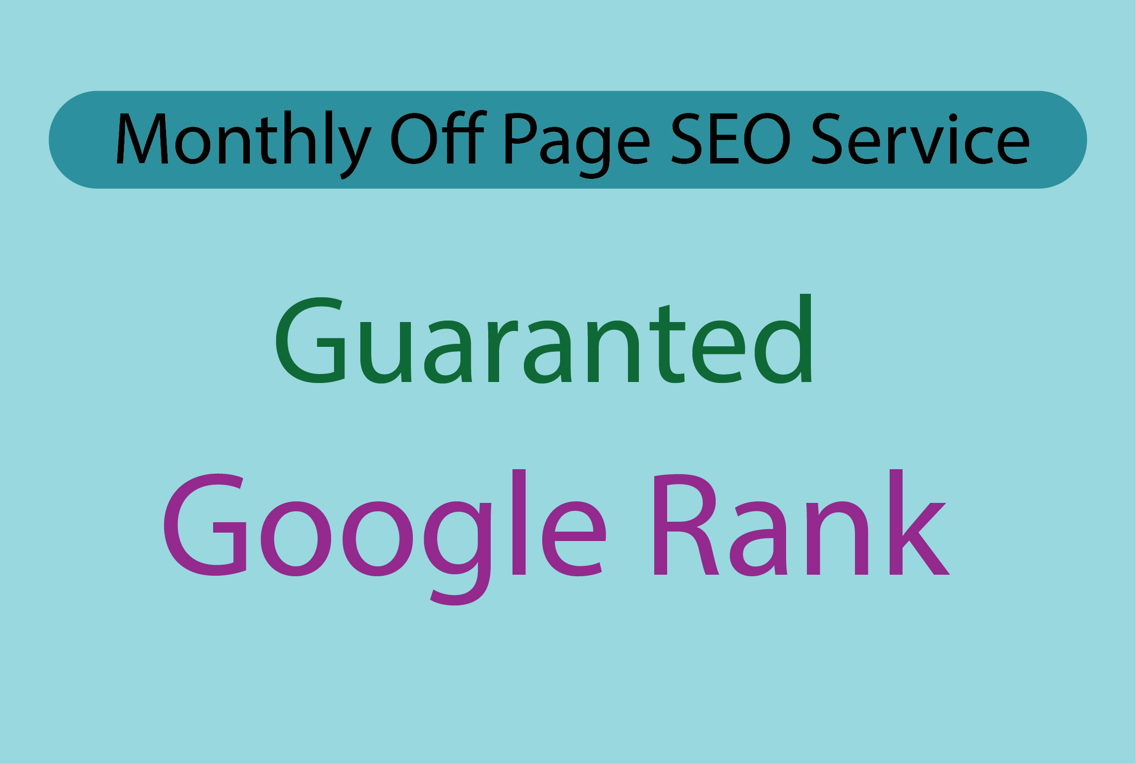 I will Provide monthly complete SEO service for your website ranking