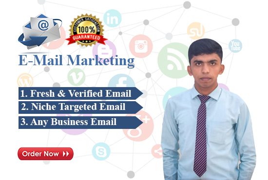 provide targeted niches clean verified email list