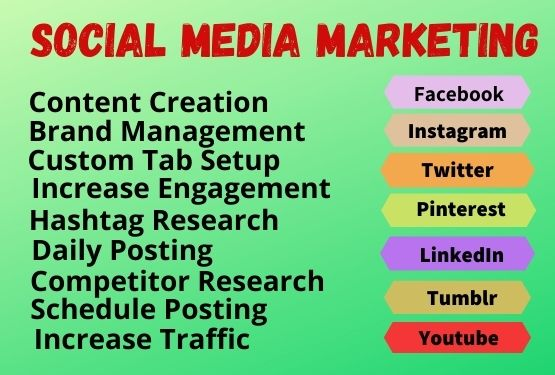 I will be your social media marketing manager and content writer