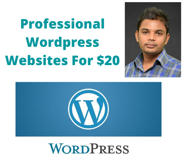 I will create professional wordpress website for your business blog or ecommerce store