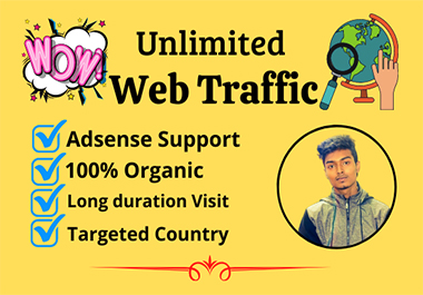 I will drive organic Web Traffic safe for your website