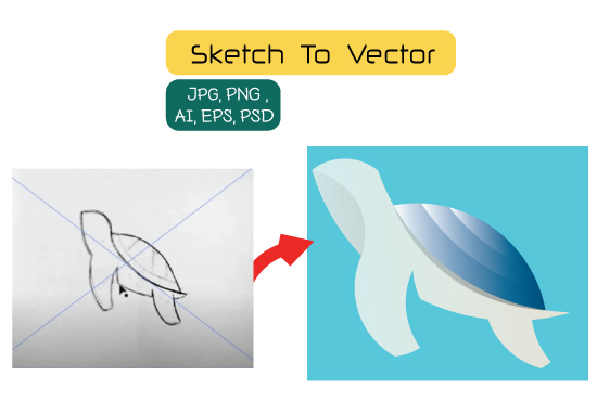 I will convert Sketch to Vector of Images Professionally
