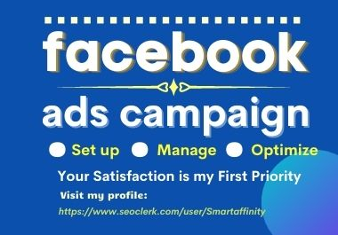 I will set up and manage a super-profitable Facebook ads campaign
