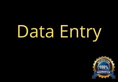I will help you to data entry for your business