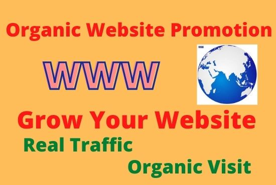 I will do organic Website Promotion