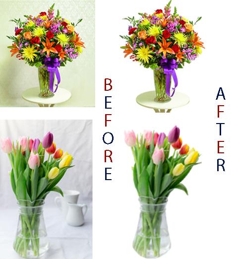 Remove background & edit high regulation photo
