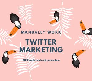 Professionally Twitter marketing management