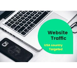 I will bring real google USA visitors targeted web traffic