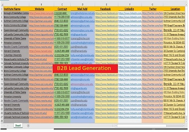 I will Generate 100 Targeted b2b Lead Generation for your business