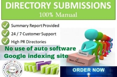 I will create 100+ high-quality directory submission manually.