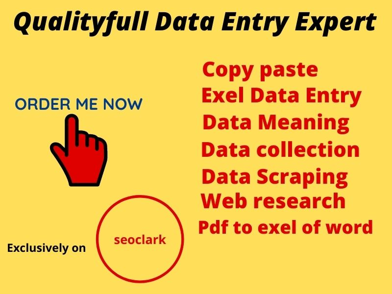 I will do data entry,  excel,  copy paste,  web research, web scraping