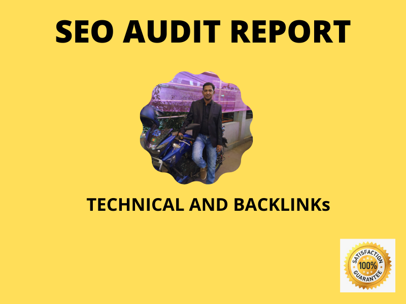 I will provide website audit reports