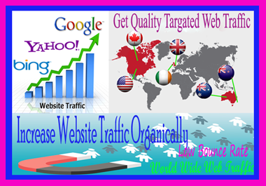 I will Provide real organic web traffic