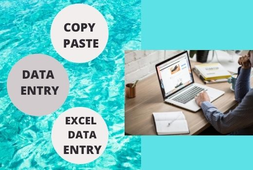 I will do copy paste,  data entry and excel data entry