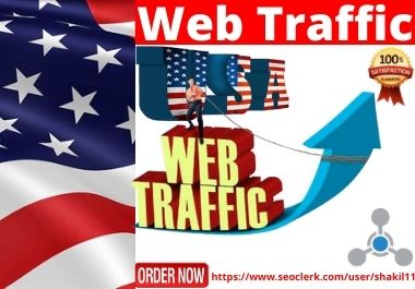 I will drive 1000 targeted real web traffic