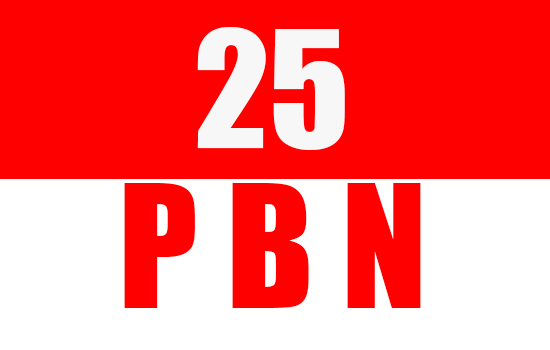 25 High Quality SEO PBN Backlinks