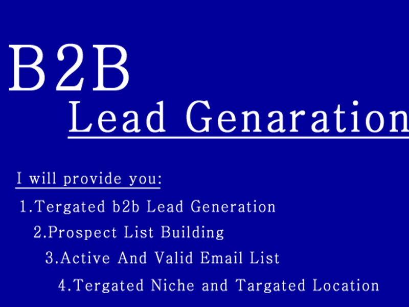 I will provide you b2b lead generation and targeted leads