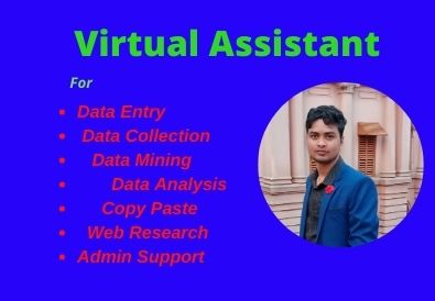 I wil Be your Virtual Assistant For Data Entry Copy Paste Web Research admin support