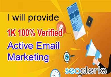 I will provide USA based 1K email list