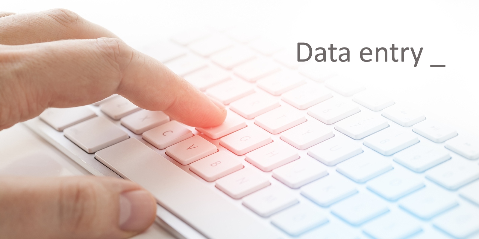 We work for data entry. working for more than 2 years. we complete the work with more accuracy.