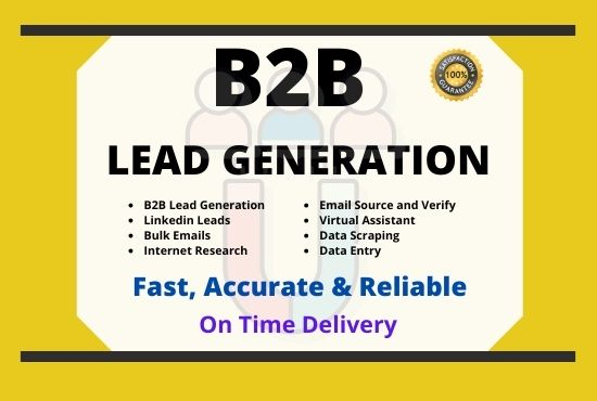 I Will Do Lead Generation for Data Entry