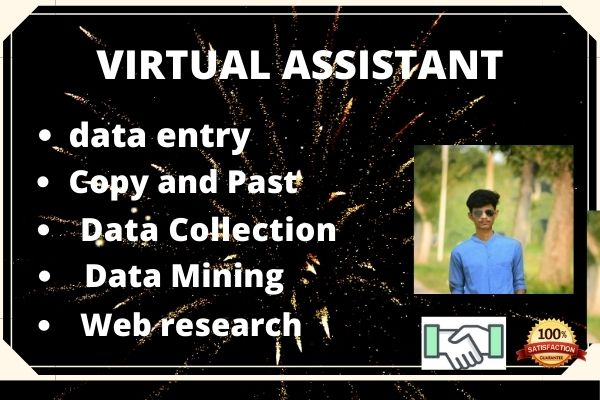 I will provide your virtual assistant service