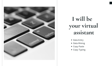 I will do data entry, copy paste, web research, data mining