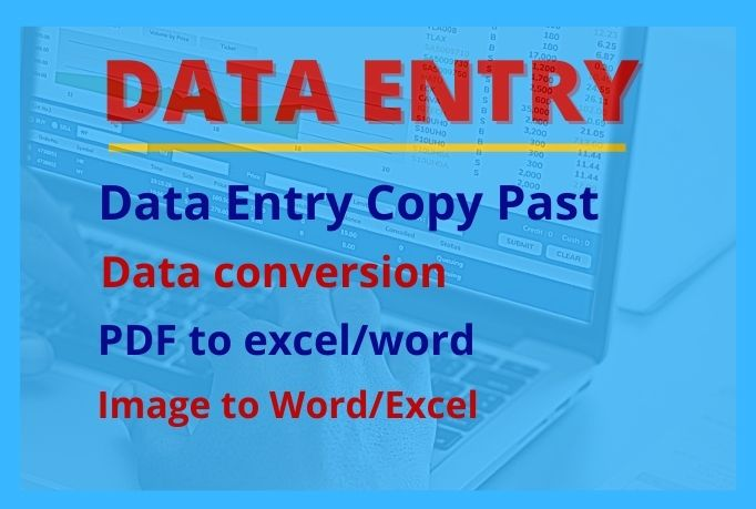 I will provide Data entry,  Data converting
