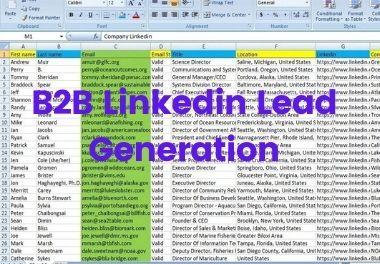i will do B2B LinkedIn lead Generation