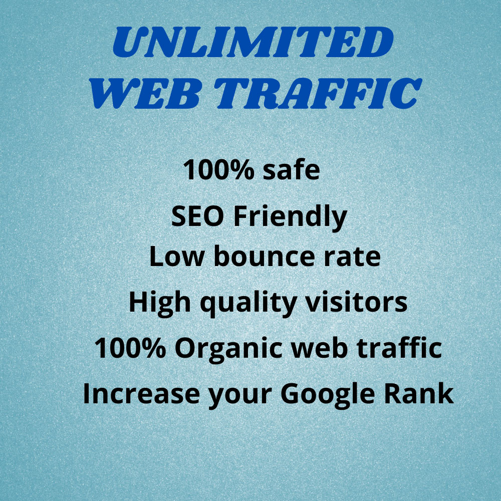 I will bring real visitors and targeted WEB TRAFFIC