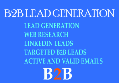 I will give targeted b2b lead generation from any company