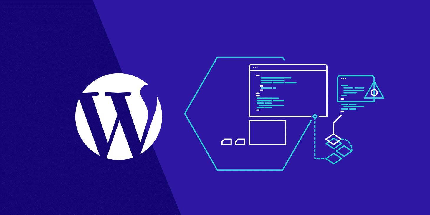 I will customization full wordpress webside plugin and theme