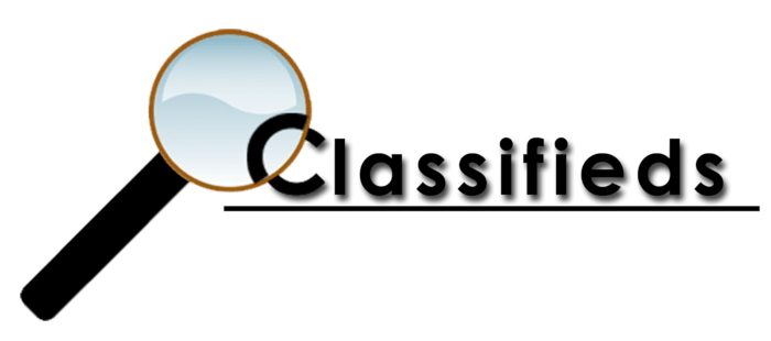 Safe 40 Classified ads Profile Link to Page Rank 1