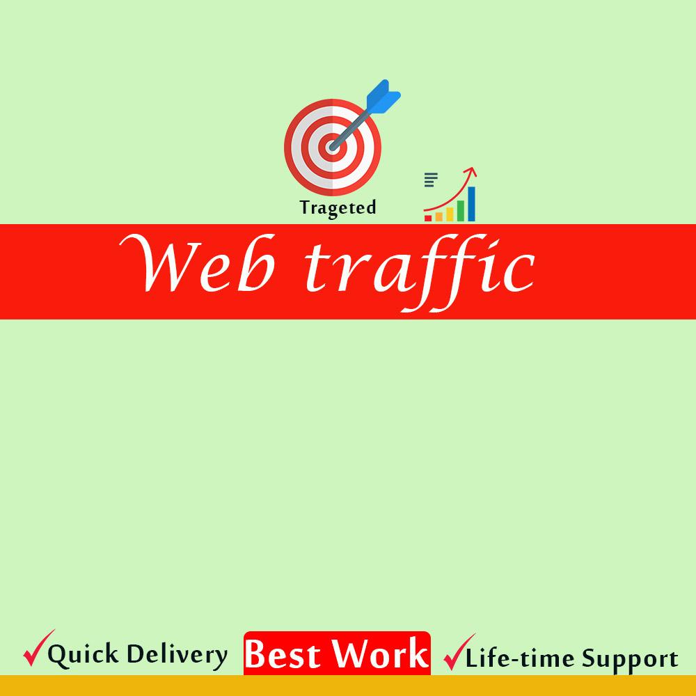 I will drive organic safe web traffic