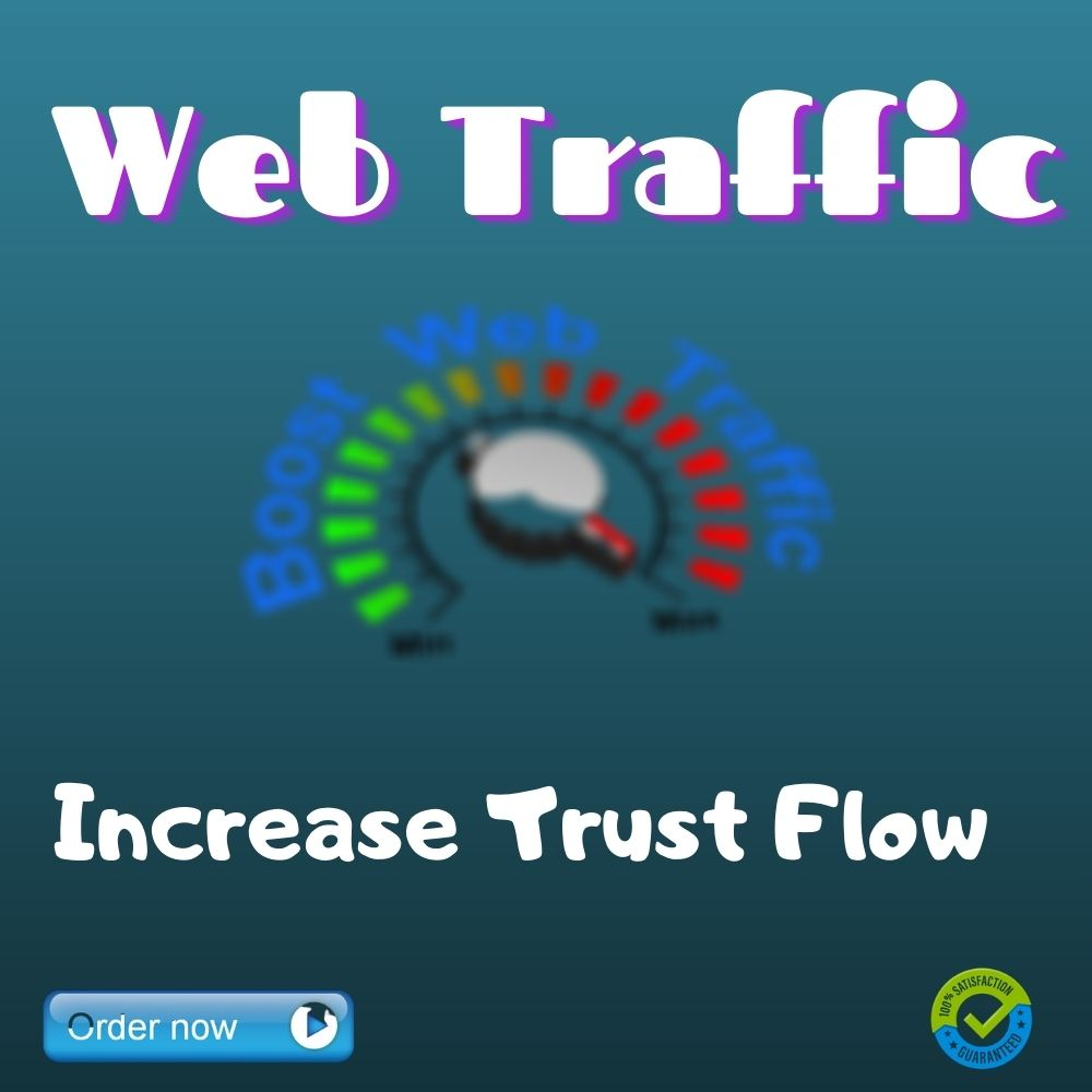 I will drive real organic web traffic
