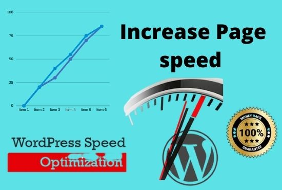 I will do increase page speed optimization