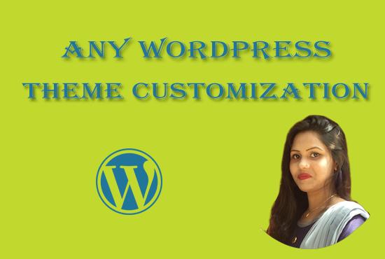 any WordPress theme customization