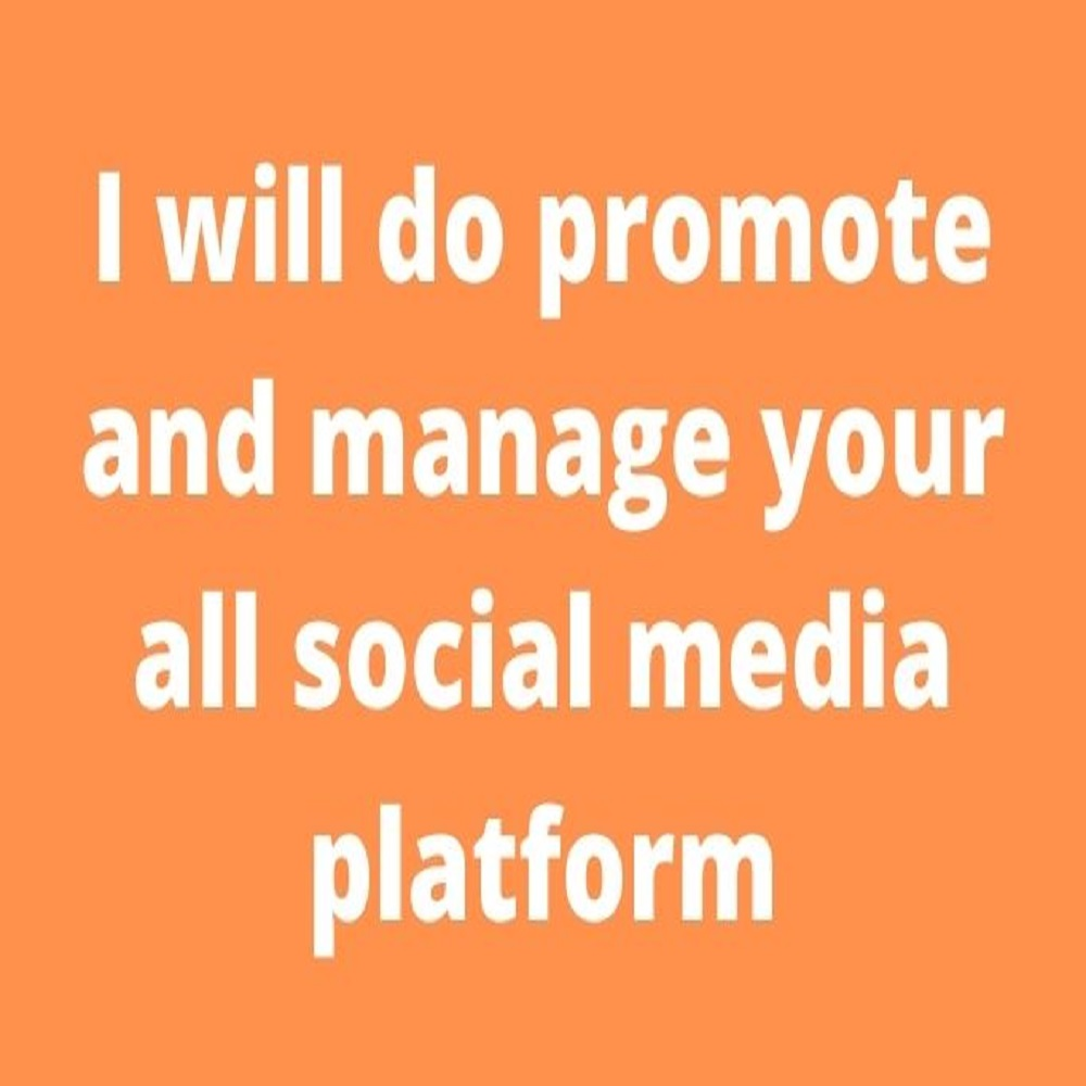 I will do promote and manage your all social media platform