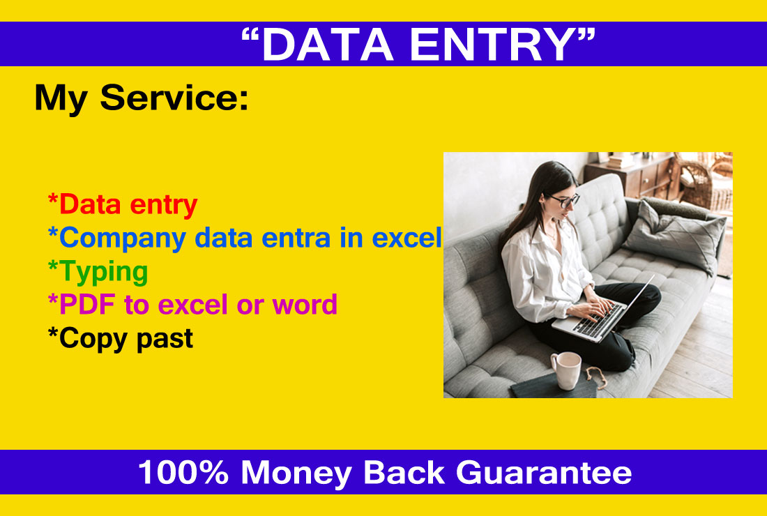 I will do fast data entry,  typing,  scan file to word or excel