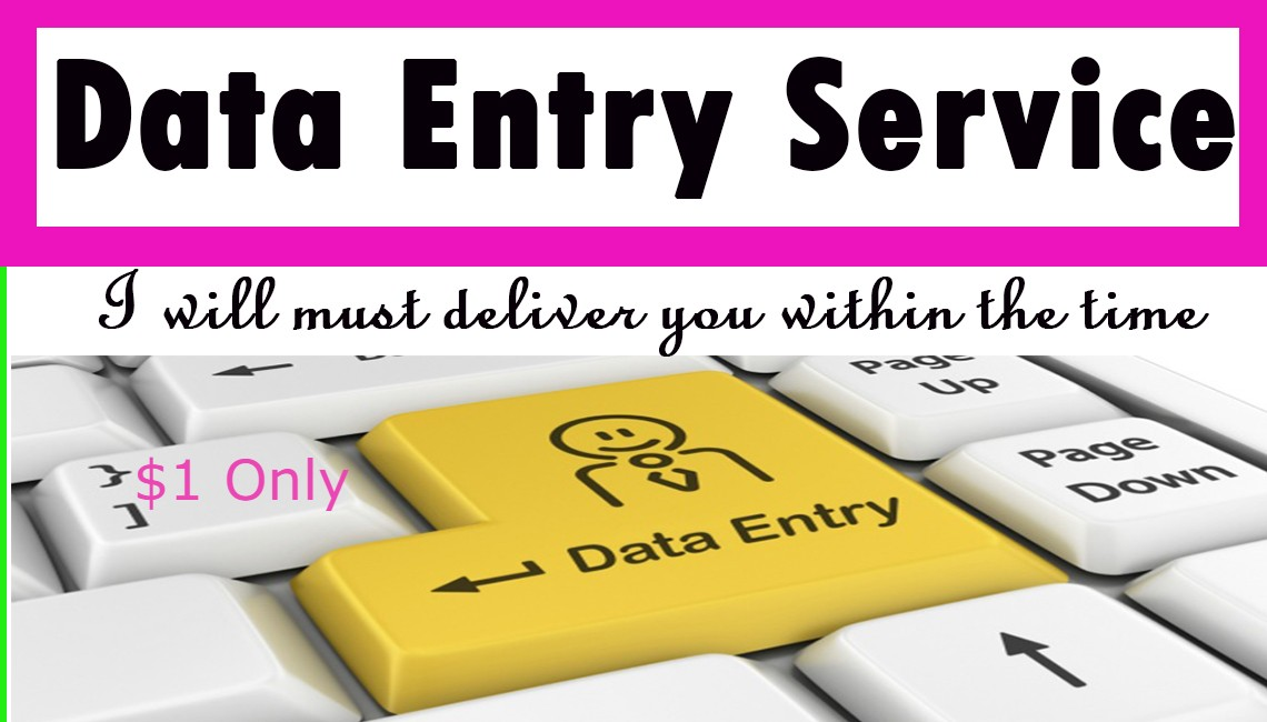 I will Provide you Data entry service in time