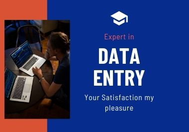 I will provide you data entry service