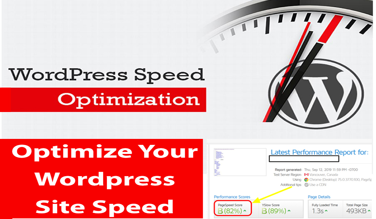 I will do increase your wordpress site optimization site speed